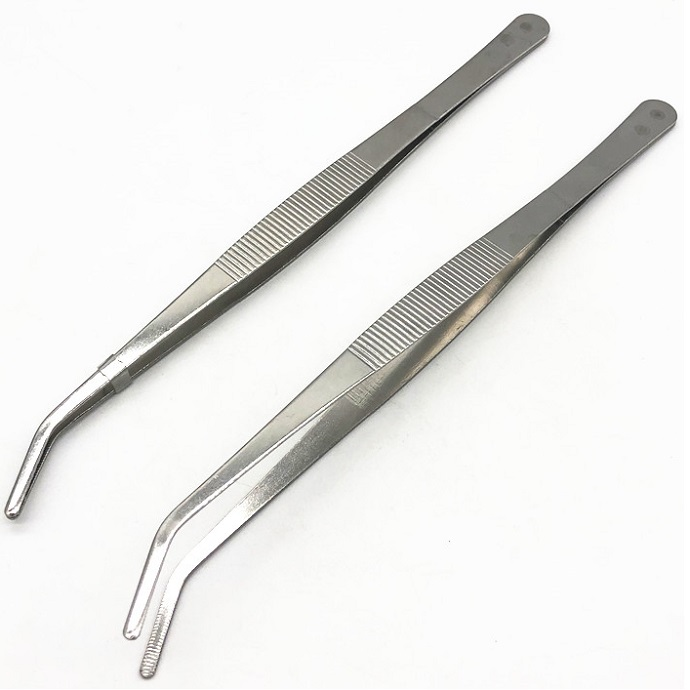 Stainless Steel forceps